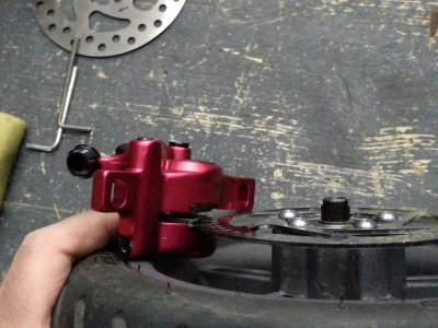 roller-3.jpg